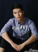 Yang Tian Zheng   Actor