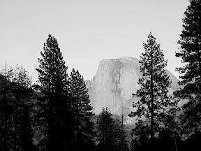 Black and white Half Dome