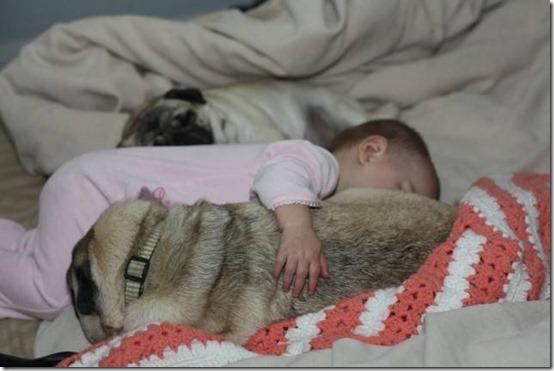 niña con perro (30)