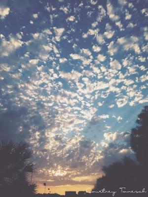 Courtney Tomesch Sunset San Diego California
