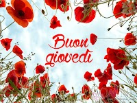 buon giovedi immagine con frase aforismo fiori rossi papaveri.jpg