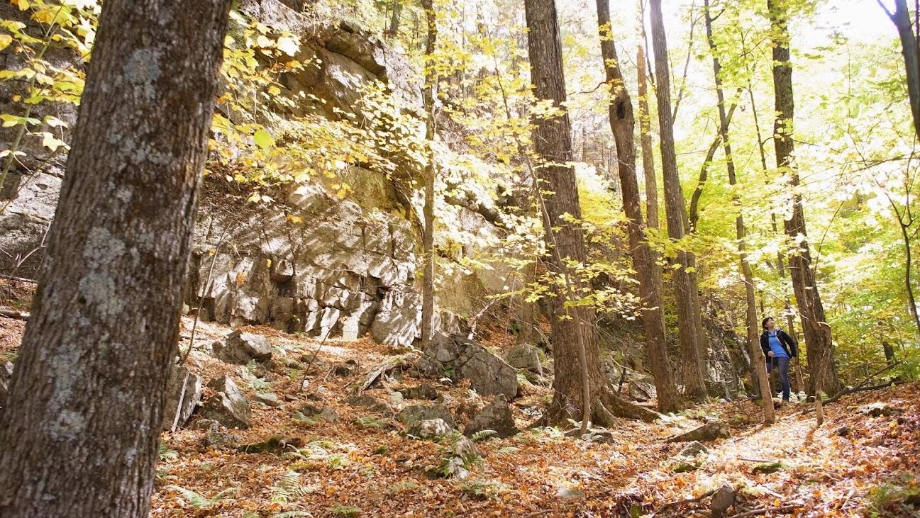 北美的林間與山岩