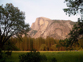Half Dome from Sentinel Meadow