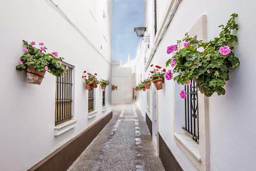 Geranios en el centro histórico de Rota Cádiz