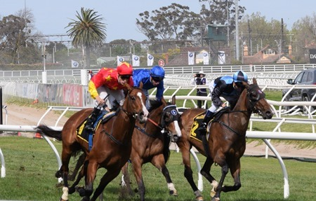 tristarc stakes_finish 3