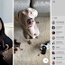 Stickers And Hands-free Video Has Been Added To Instagram
