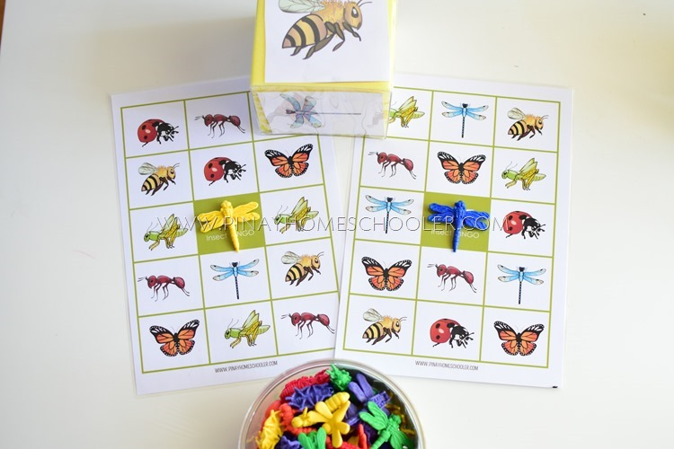 Insect Themed BINGO Game