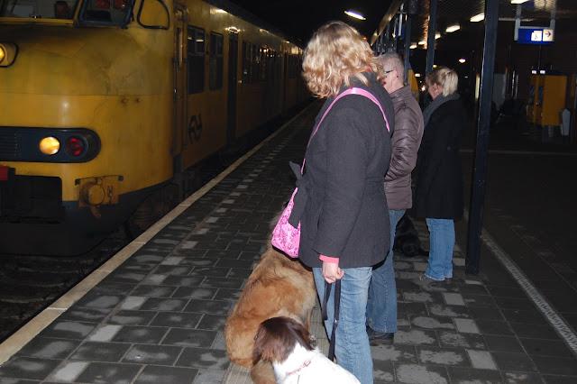 Jonge Hond centrum Emmen - 2012-04-01%2B053.JPG