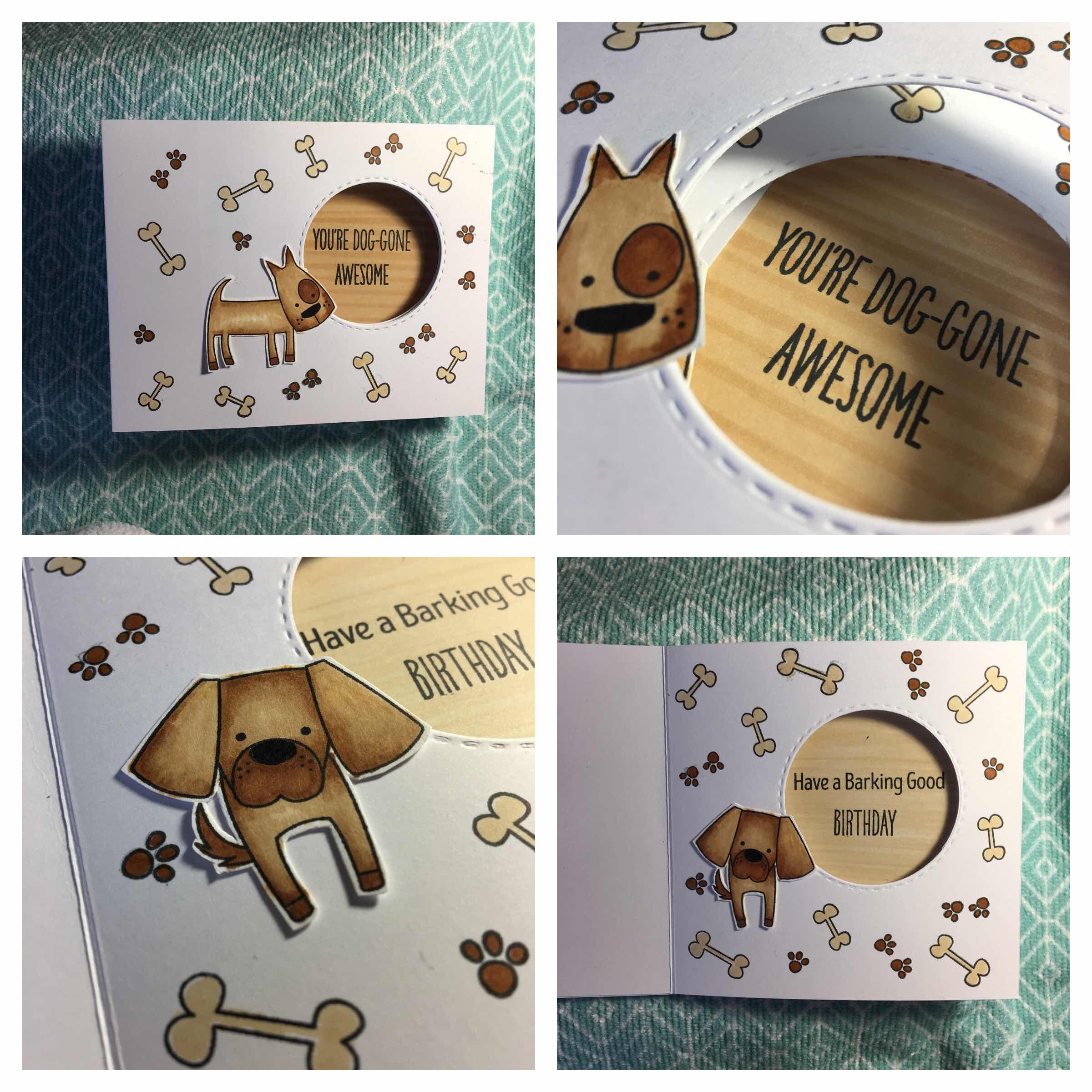 Dog-Gone Awesome MFT Peek-a-Boo
