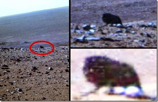 four-legged creature Mars Opportunity Mars rover