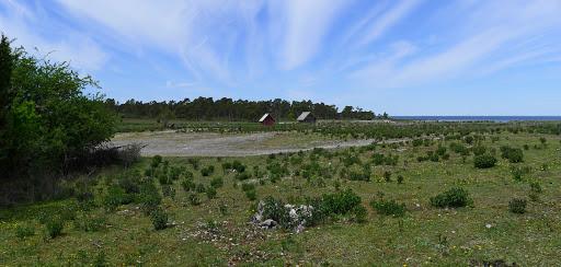 2015-06-05 036_035(Gotland)c1.jpg