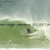 _DSC6377.thumb.jpg