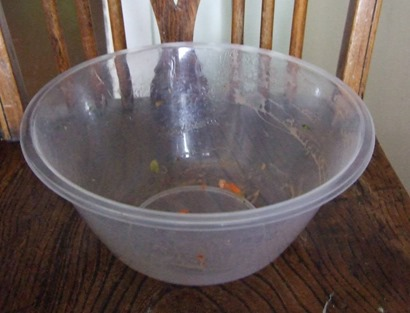 Salad bowl thrown away after picnic1_web