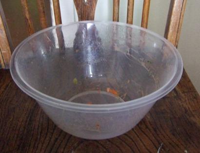 Salad bowl thrown away after picnic1_web