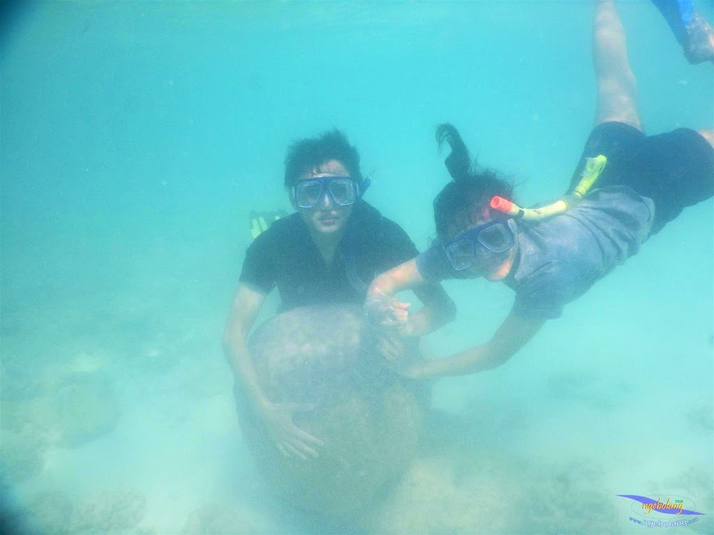 pulau pari, 23-24 mei 2015 41