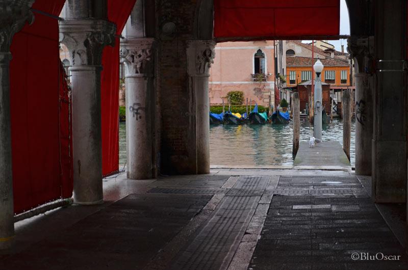 Venezia come la vedo Io 25 11 2013 N 2