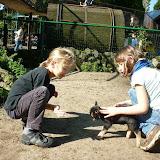 2010 - Olmense Zoo met wouters