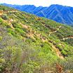 san-juan-trail-IMG_0297.jpg