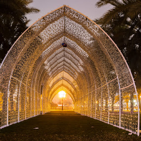 A-Maze-In by Ansari Joshi - City,  Street & Park  City Parks ( sharjah events, artisitc, park, colors, slf2018, tourism, city park, maze, nightscape, lights, night photography, uae, long exposure, sharjah tourism, i love sharjah, illumination, oasis, travel photography, sharjah, sharjah light festival 2018,  )