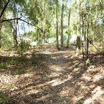 Track upto houses in Green Point Reserve (403696)