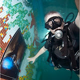 2011 г. Выставка по подводному фотографированию