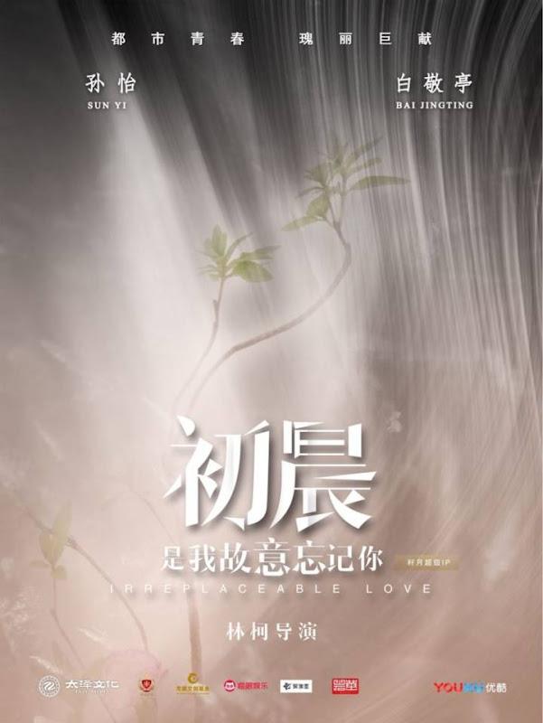 Irreplaceable Love China Web Drama