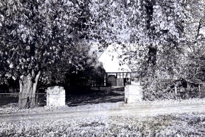 Mächtige Kastanienbäume säumen die Hofeinfahrt des historischen Meterhohes zu Krentrup. Zur 600jährigen Wiederkehr der ersten Erwähnung des Namens Krentrup findet hier eine Jubiläumsfeier statt. Foto: Dieter Hunke