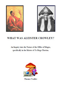 Cover of Thomas Voxfire's Book What was Aleister Crowley