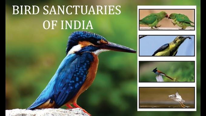 List of Bird Sanctuary in India