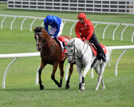 orr stakes_hartnell 5