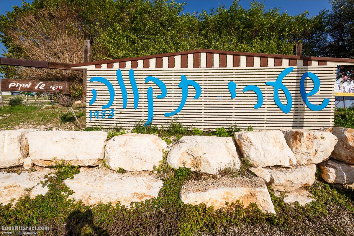 Точки над iзраилем - Шаарей Тиква