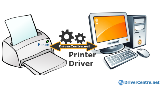 What is Epson EasyMP.net Network Option Board printer driver?