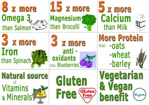 Badan Sihat Hati Ceria: Kebaikan Chia Seeds dalam Diet ...