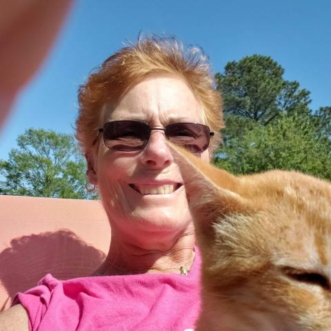 user Karen Horner apkdeer profile image
