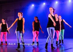 Han Balk Voorster Dansdag 2016-4095-2.jpg