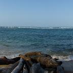 Panorámica de playa Arenilla