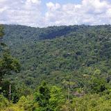 La Montagne Cacao depuis la piste de Coralie, 30 octobre 2012. Photo : J.-M. Gayman