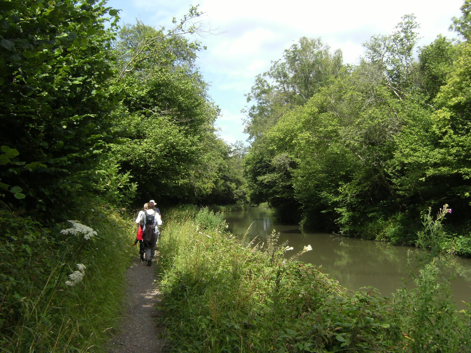 DSCF8776 Along the Basingstoke Canal