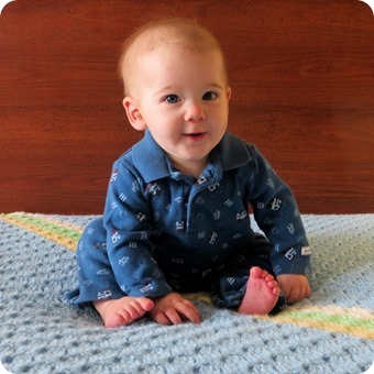 Henry 6 Month Portraits