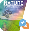 Nature Sounds : Relaxing Sounds & Alarm icon