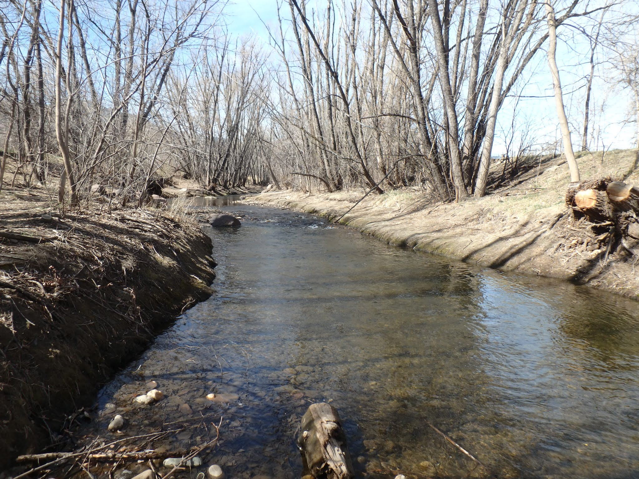 Boulder creek 03 18 2017 dave weller 39 s fly fishing blog for Boulder creek fishing