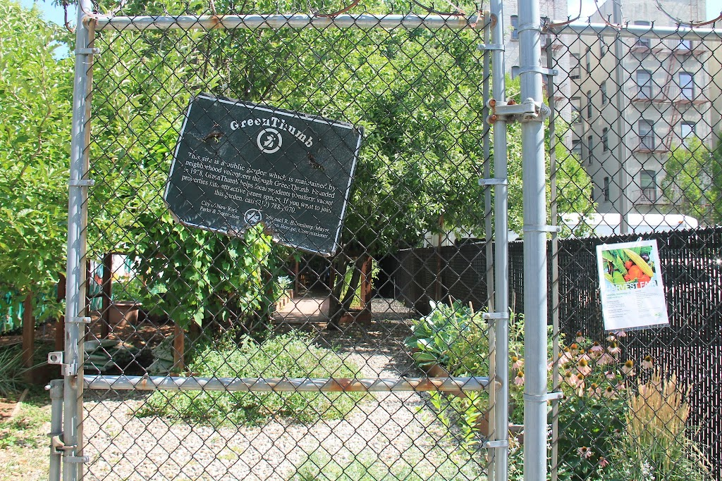 After scouting out El Gallo and Jackie Robinson gardens, we find the Children's Aid Society Garden is open