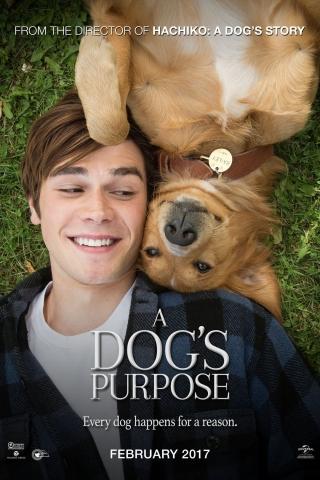 Mục đích sống của một chú chó - A Dog's Purpose (2017)