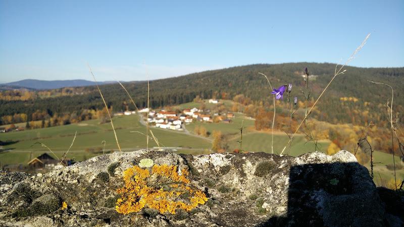 Blick von der Burg ins Tal