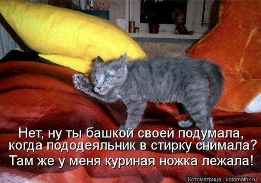 1356678412_kotomatrix_50