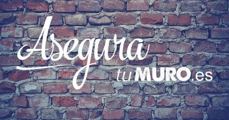 asegura_muro.jpg