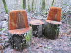 Benches carved out of tree stumps along Eagle Trail.