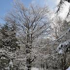 Zimovanje_19_2_080.JPG