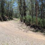 Sharp bend near bottom of Donny's Track (223874)