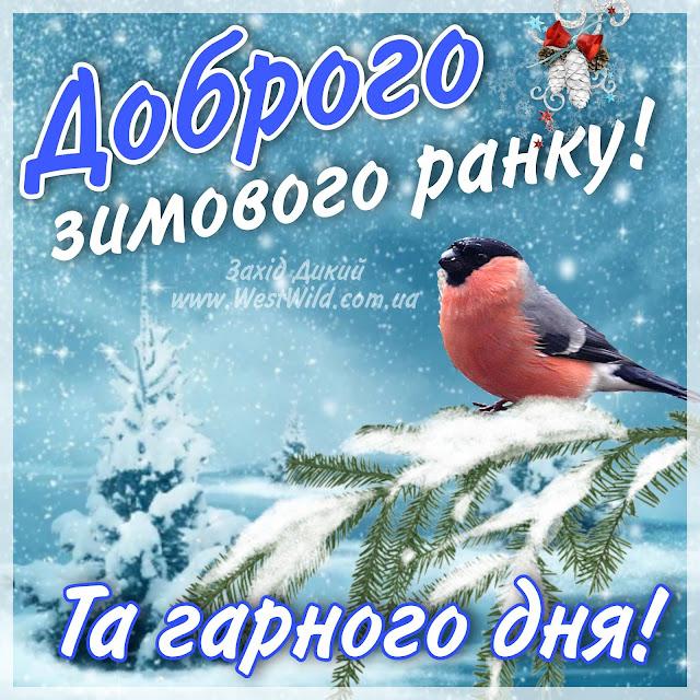Привітання доброго ранку зима